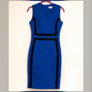 Calvin Klein Cobalt Blue Dress